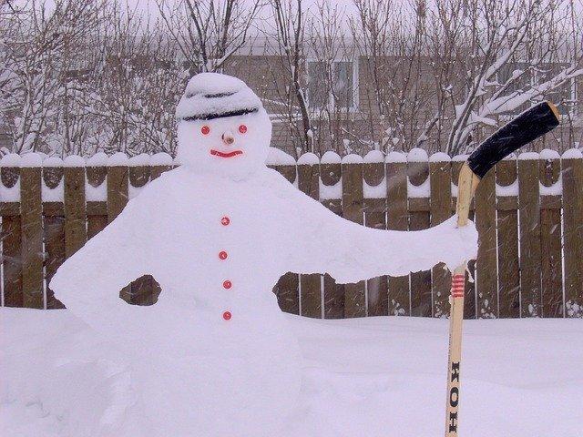 sněhulák na zahradě