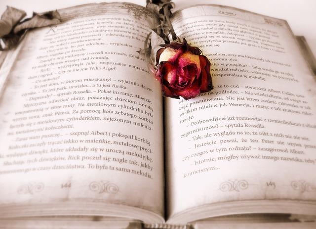 suchá růže na knize